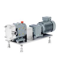 RT系列轉子泵